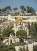 Gethsemane (10)