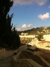 Gethsemane (14)