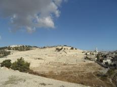 Gethsemane (2)