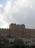 Gethsemane (28)