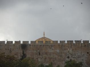 Gethsemane (29)