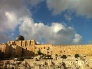 Gethsemane (34)