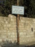 Gethsemane (39)