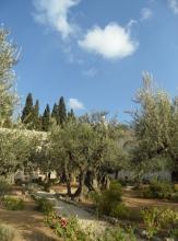 Gethsemane (43)