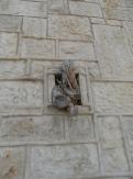 Gethsemane (6)