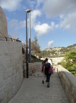 Gethsemane (9)
