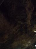 Gethsemane (90)