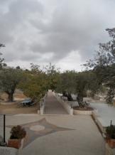 Gethsemane (96)