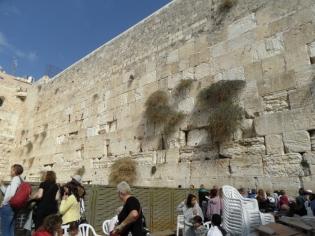 Western wall (32)