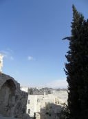 Western wall (36)