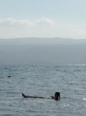 Dead Sea - Kalia Beach (58)