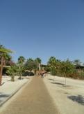 Dead Sea - Kalia Beach (68)