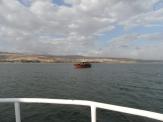 Le lac de Galilée (34)