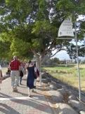 Le lac de Galilée (44)