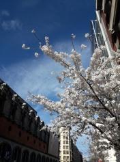 Bilbao sous un soleil radieux ! (24)