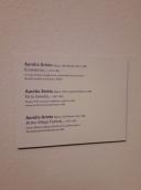 Museo de Bellas Artes - Bilbao (36)