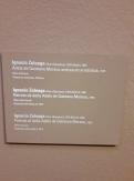 Museo de Bellas Artes - Bilbao (50)