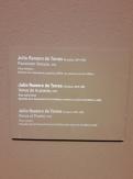 Museo de Bellas Artes - Bilbao (51)