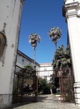 Musée national de l'Azulejo (15)